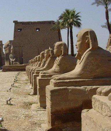 Avenue of Sphinxes : il viale visto da un lato