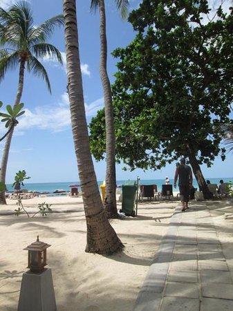 Samui First House Resort : plage