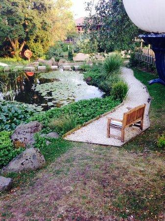 Aztec Hotel & Spa Bristol: the pond