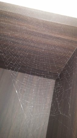 Hotel Riverton: Scary spidernet over the coffemachine room 1102