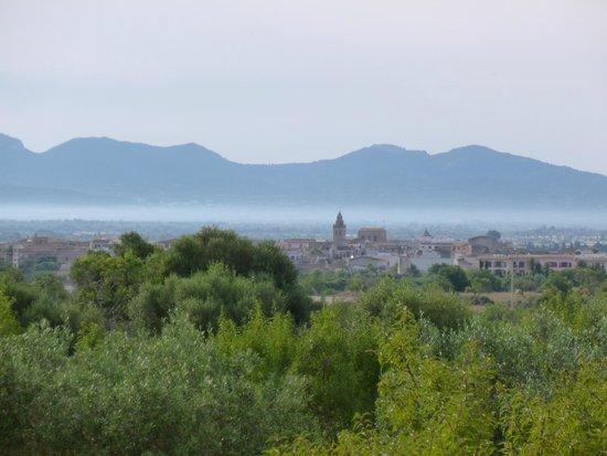 Finca Son Jorbo: Mist over Porreres, from Rosa terrace