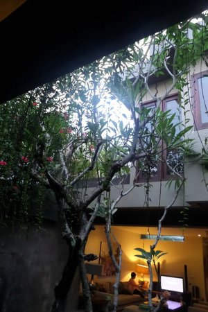 Kanishka Villas : Overhanging gardens