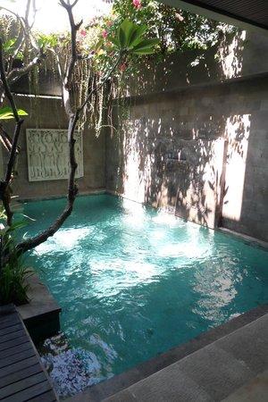 Kanishka Villas : Pool