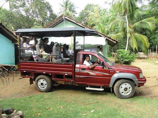 Lake View Lanka Guesthouse: safari to udawalawa national park