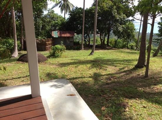 Jungle Club: onze buurman