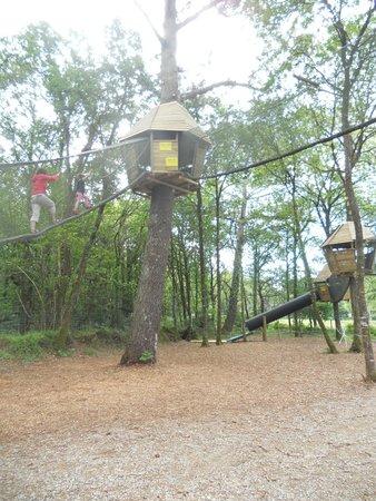 Le P'tit Délire : Tree top walk