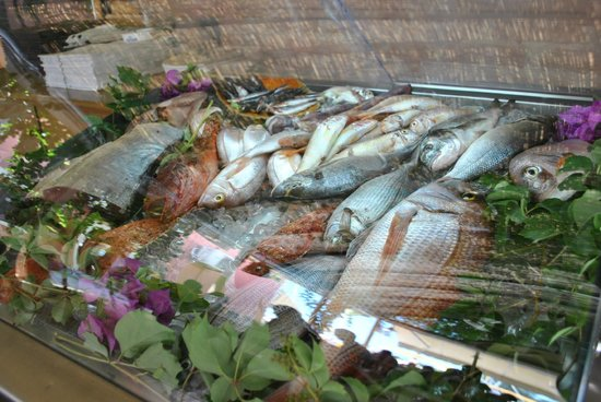 Pan & Theo Restaurant: Great fresh fish selection
