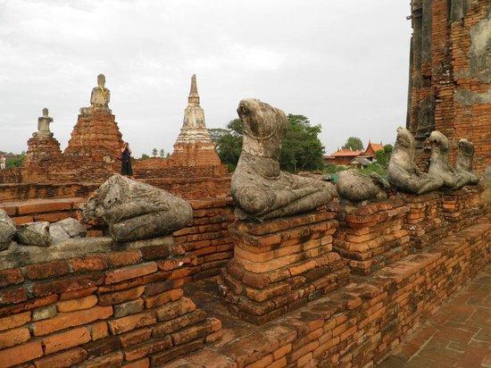 Wat Chaiwatthanaram : Fila de budas en Chaiwattanarm