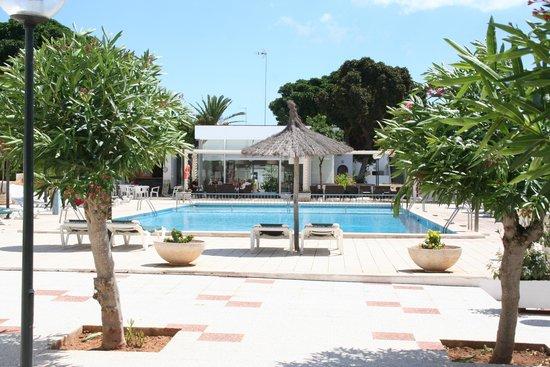 Los Naranjos Apartamentos : View of the pool