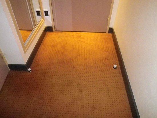 Hôtel Les Portes de Sologne : entrée chambre