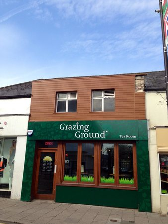 Grazing Ground