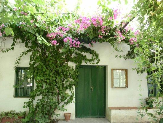 Estanque en los jardines fotograf a de museo casa natal federico garc a lorca granada - Los jardines de lorca ...