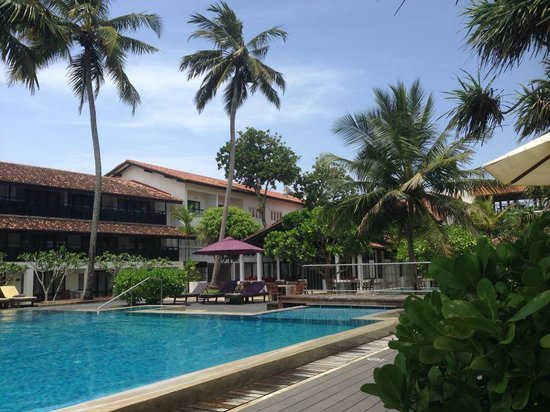 AVANI Bentota Resort & Spa: Pool/Garten