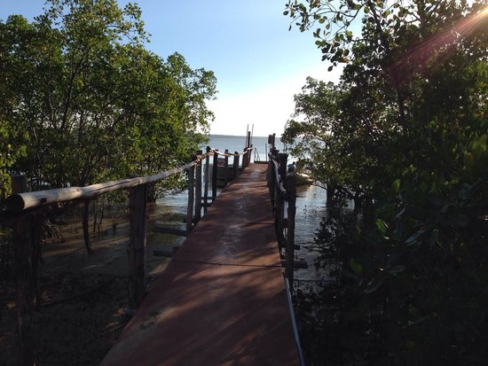 Clearwater Island Lodge : Fantastic place