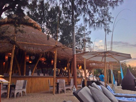Karma Reef: The bar