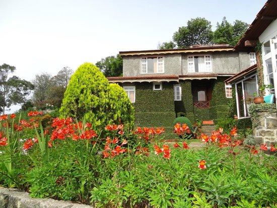 Villa Retreat: Lawn