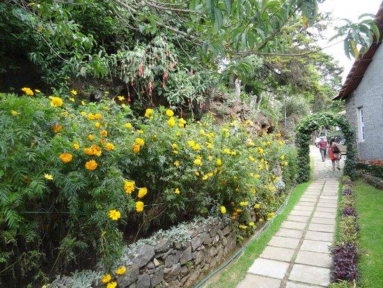 Villa Retreat: Pathway to rooms