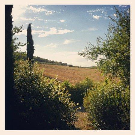 Borgo al Cerro: Utsikt fra hagen