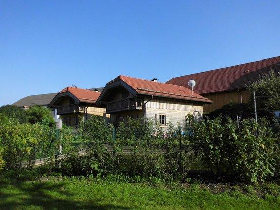 Bauernhof Lenzenbauer: cottages from garden