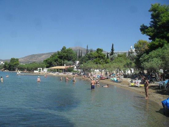 Holidays In Evia & Eretria Village Hotels: plage