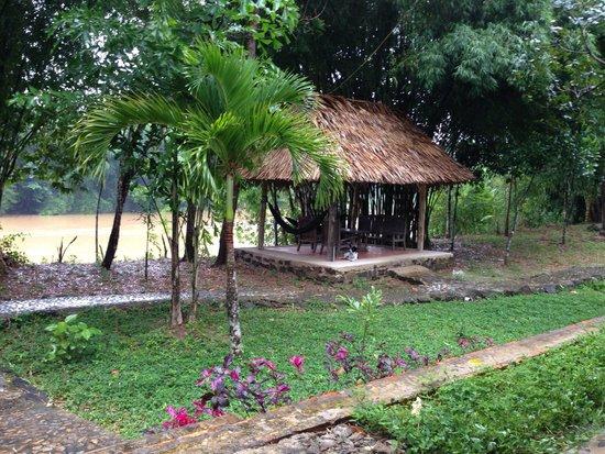 Green Hope Lodge: Uitzicht op rivier en relaxplekje (met hangmatten!)