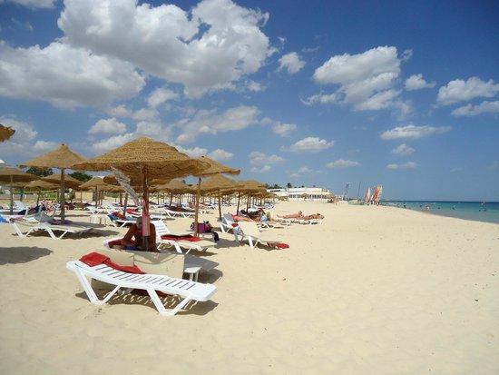 Club Marmara Hammamet Beach: La plage avec ses transats