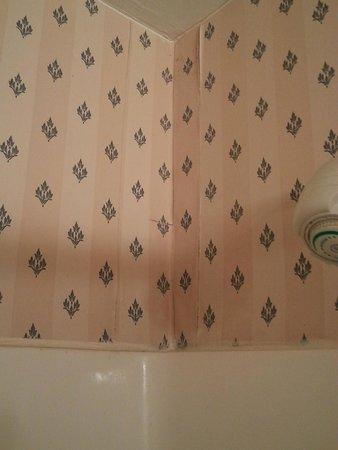 Comfort Inn & Suites Galleria : bathroom molding