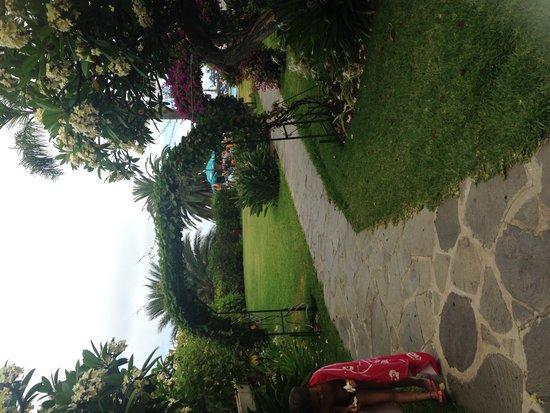 Miramar Hotel Tenerife Island: Pool Area