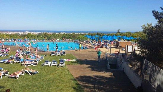 Vilanova Park: Piscine au bout du camping a côté du golf ou terrains foot. Transats tjrs dispos ou herbe grasse