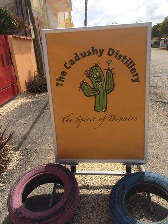 The Cadushy Distillery: Cadushy