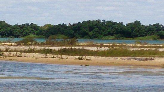 Resultado de imagem para rio são francisco em petrolina