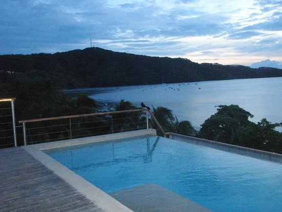 View from the pool area