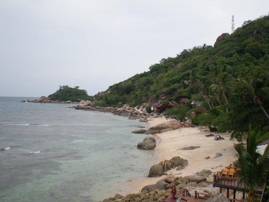 Pinnacle Koh Tao Resort: Пляж