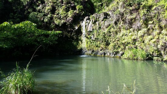 Hana Highway - Road to Hana : Small Waterfall at Wayside State Park Rest Area