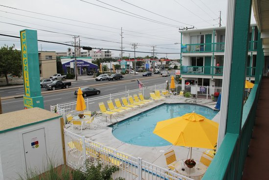 Beach House Rentals Ocean City Md Pet Friendly