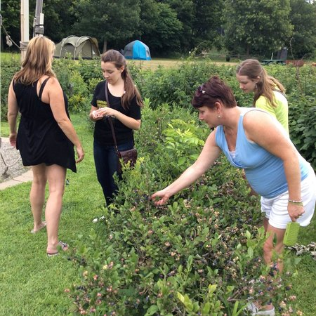 Great River Outfitters And The Path of Life Garden: Eating blueberrys in Joy