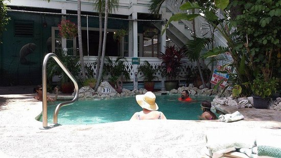Courtney's Place: Beautiful pool and well maintained
