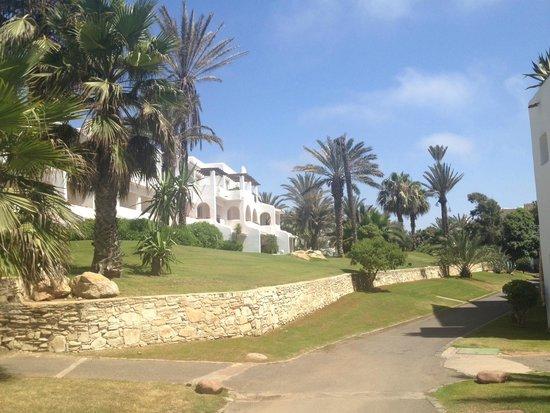 ClubHotel Riu Tikida Dunas : Another garden pic...