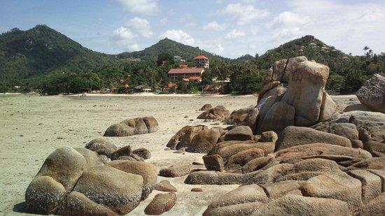 Palm Coco Mantra: Blick vom Strand (Hotel aber kaum erkennbar)