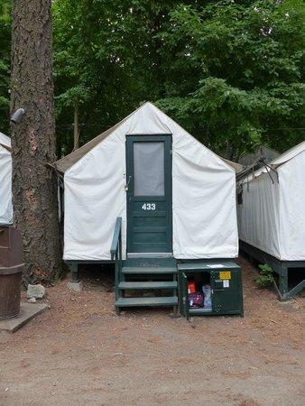 Half Dome Village: Tente vue extérieure