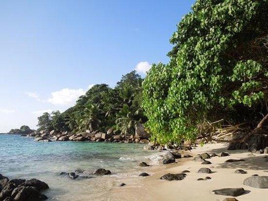 Hilton Seychelles Northolme Resort & Spa: Rhe resort's beach