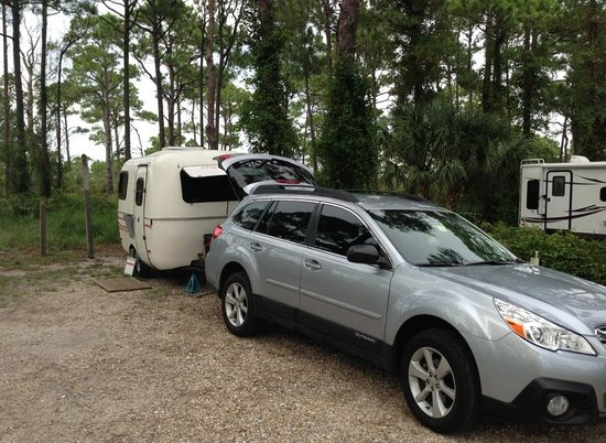 Saint George Island State Park: Campsite 9