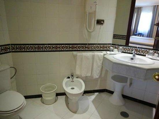 Hotel Alixares : 洗面所