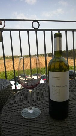 Hotel Principe di Fitalia Wellness & SPa : Enjoying a great Sicilian wine on the fantastic balcony. Get your bottle opened in the restauran