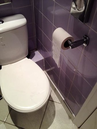 Mercure Perth Hotel : Had to sit side-saddle to avoid toilet roll holder