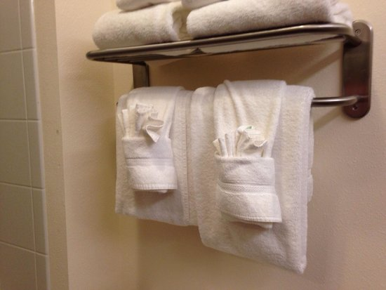 Holiday Inn Express & Suites Cambridge : The towels and bathroom are so fancy and special