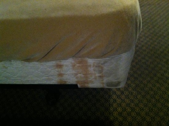 Rodeway Inn : Stain on Bed