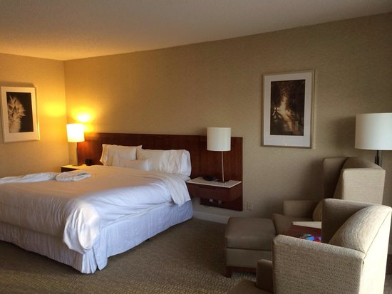 Westin Galleria Houston Hotel: King room