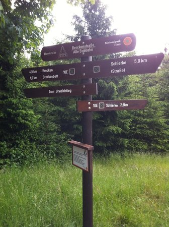 Nationalpark Harz: Which way do we go?