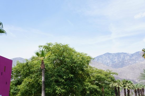 The Saguaro Palm Springs: Parking Lot view of the San Jacinto Mountains